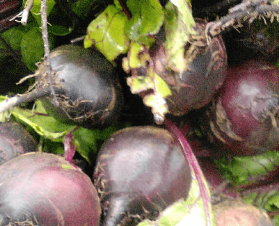 Beets one of the high sources of nitric oxide