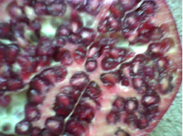 Pomegranate increases nitric oxide in the blood to ovecome erectile dysfunction